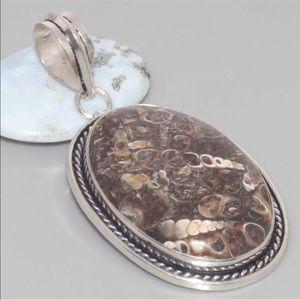 "Jewelry - Turritella Fossil Agate Pendant 2.3"""
